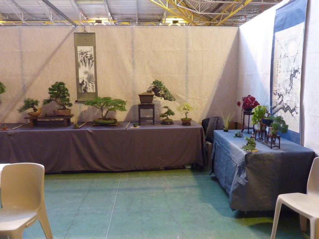 Expo Fête des associations 2015