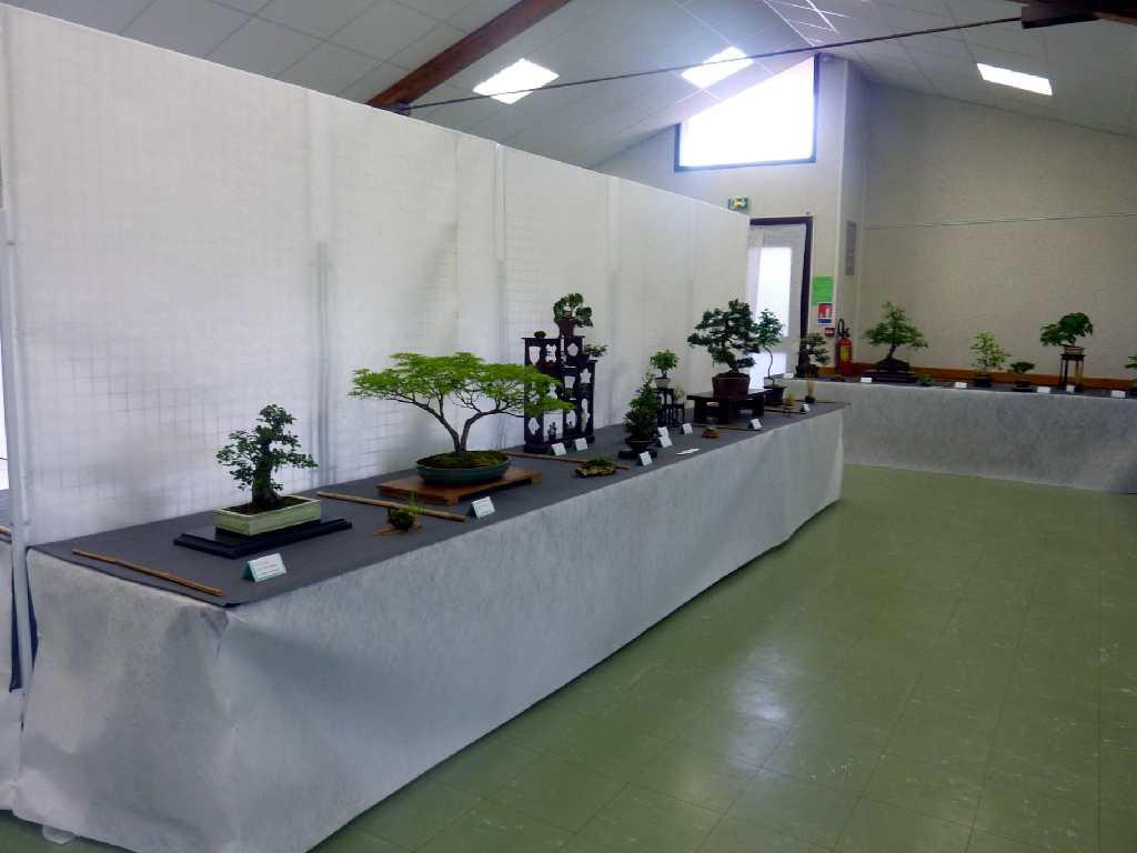 photo-de-l'exposition-4