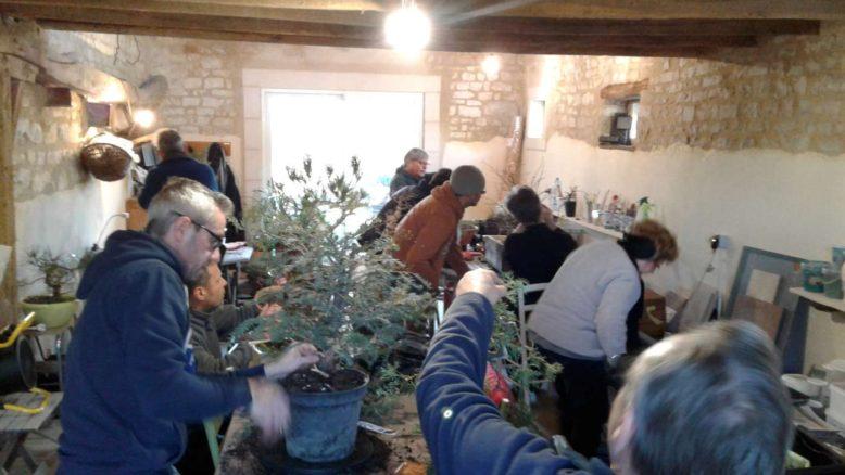 atelier bonsai club de bourges